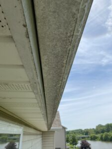 gutters need cleaning ofallon missouri